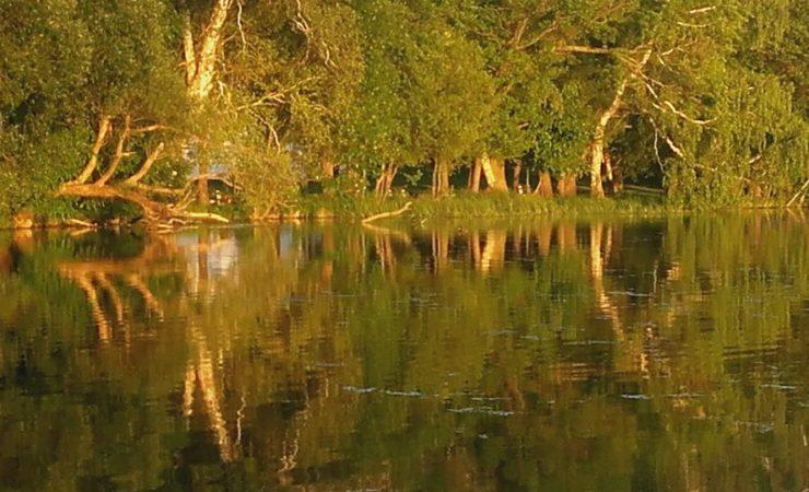 Odtworzyć przyrodę i krajobraz w parkach narodowych