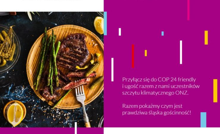 Projekt COP24 friendly w Katowicach